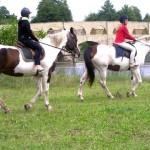 Конно спортивный лагерь верховой езды в Литве