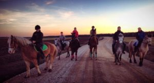 конно спортивный лагерь для детей