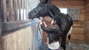 Лагерь для детей лошади