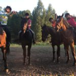 Конно - спортивный лагерь в Латвии 2019