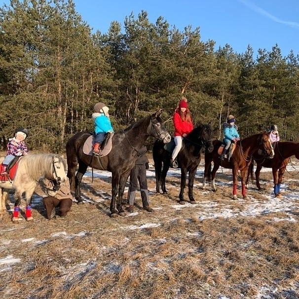 конные прогулки с лошадьми
