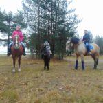 Семейный отдых с лошадьми и творческими занятиями