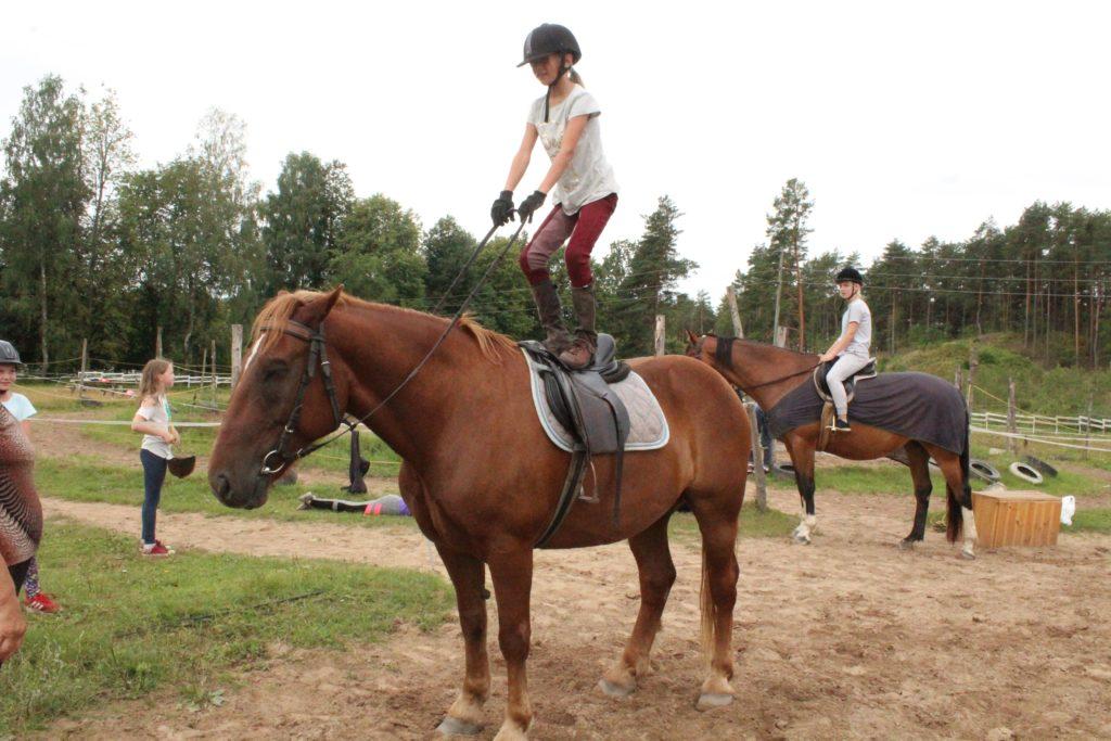 дневной конно - спортивный лагерь
