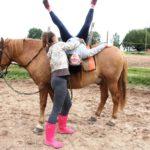 Дневной конно — спортивный лагерь