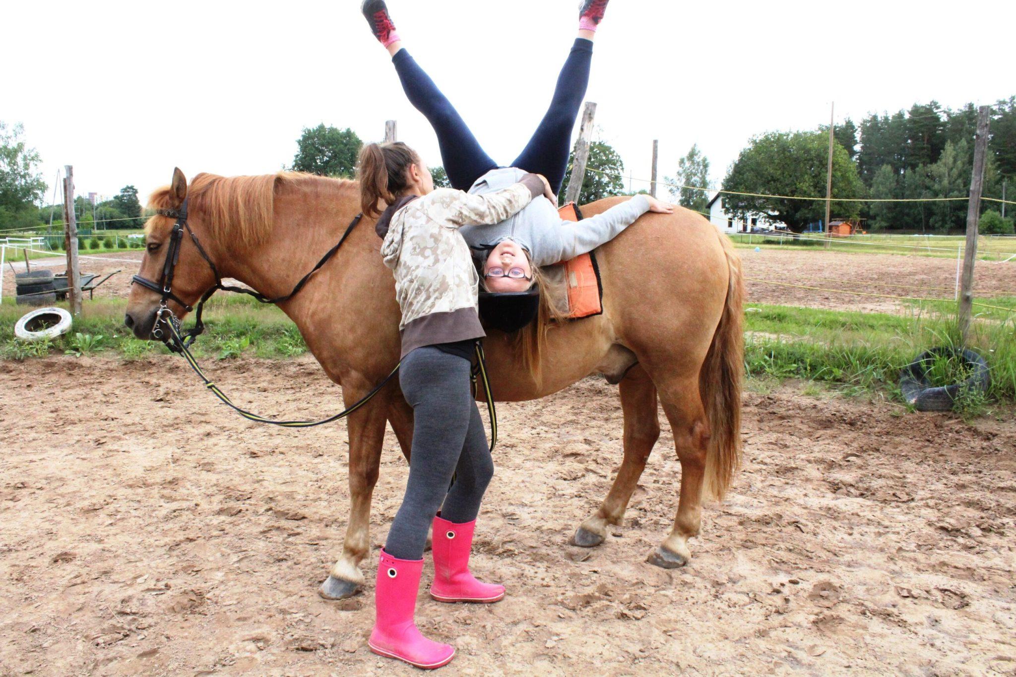 конный лагерь в Прибалтике